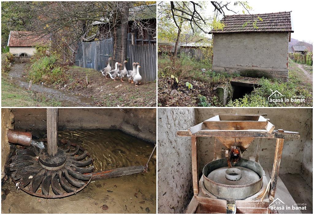 Morile de apă din Șopotu Vechi. Moara Mică din Sopotu Vechi