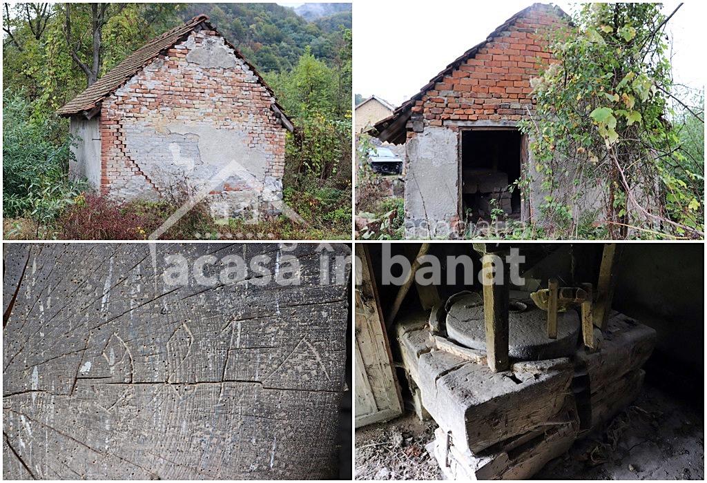 Morile de apă din Feneș - Moara din Țarină
